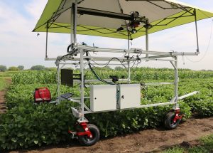 University of Minnesota Outdoor Phenotyping Cart